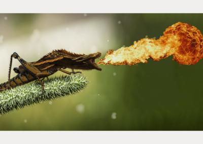 Animal mythique : le dragonelle